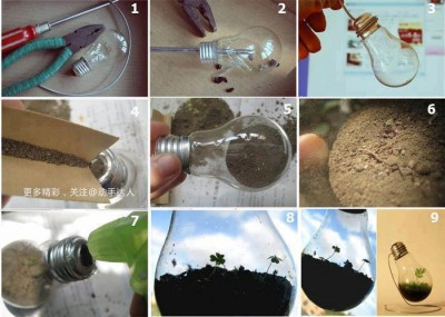 How to easily make inspirational plant in light bulb step by step DIY tutorial instructions