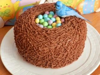 Bird Nest Cake Tutorial