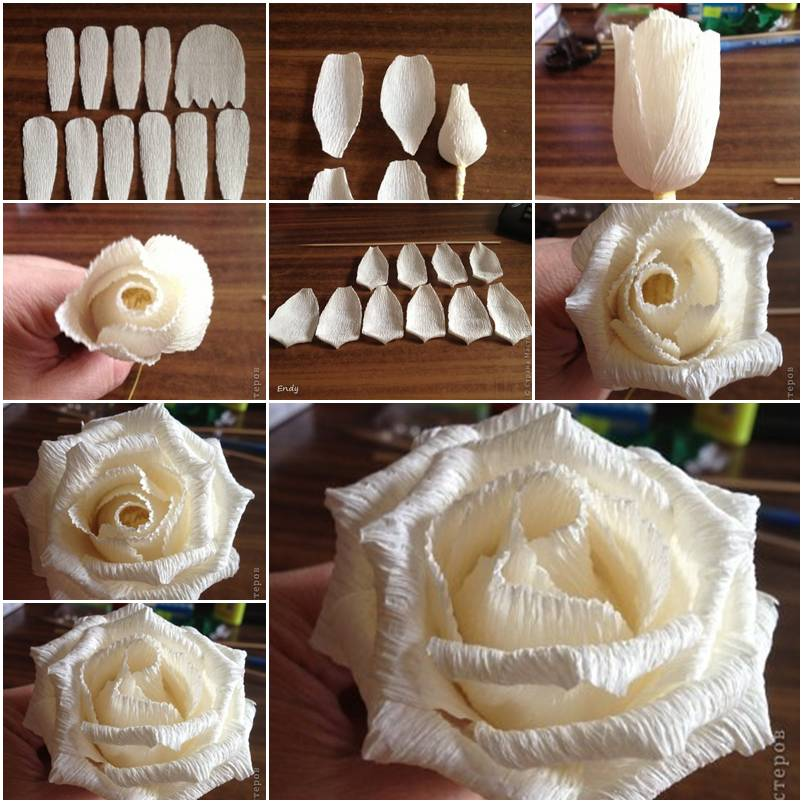 How To Make Crepe Paper Roses step by step DIY tutorial ... | 803x803