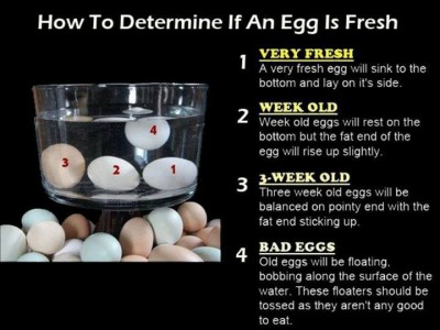 How to determine if an egg is fresh step by step DIY tutorial instructions
