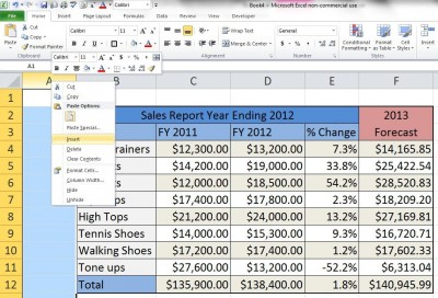 how to Create a Sales Report and Forecast in Microsoft Excel step by step DIY tutorial instructions thumb