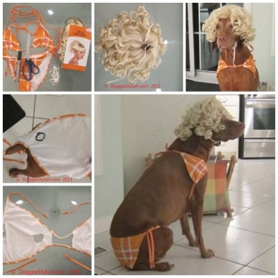 how to make Beach girl Dog Halloween Costume step by step DIY tutorial instructions