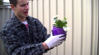 How to plant pretty flowers step by step DIY tutorial instructions