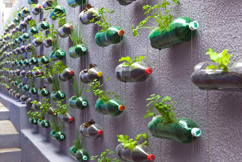 How to make vertical garden with plastic water bottles step by step DIY tutorial instructions