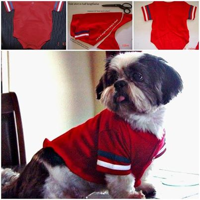 How to make dog shirt from baby tee shirt step by step diy for How to make a shirt for your dog