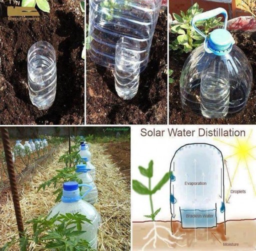 How to make simple solar water distillation system step by step DIY tutorial instructions