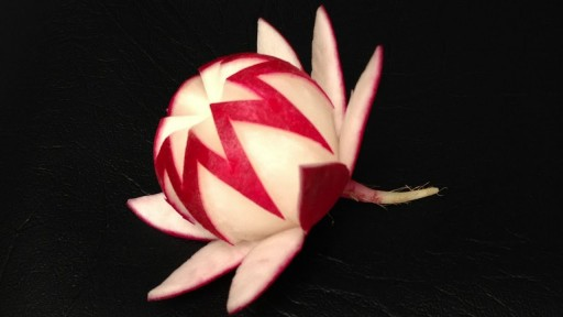 How to carve simple radish waratah flower step by step DIY tutorial instructions