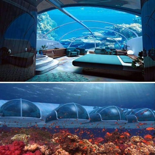 marvellous under sea hotel room picture