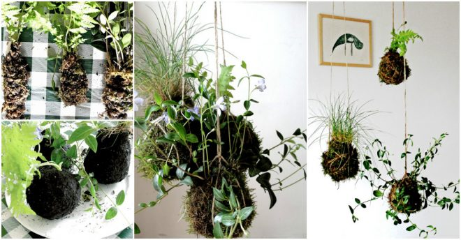 how-to-make-cute-diy-kokedama-string-hanging-garden