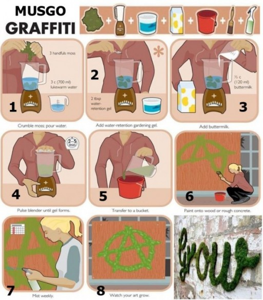 How to grow eco-friendly moss graffiti art step by step DIY tutorial instructions