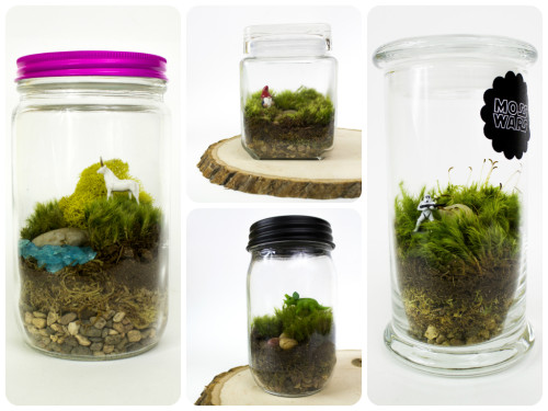 How to make cute DIY moss terrarium step by step tutorial instructions