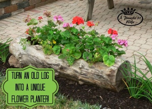 How to make a beautiful DIY log garden planter step by step tutorial instructions 512x366 How to make a beautiful DIY log garden planter step by step tutorial instructions