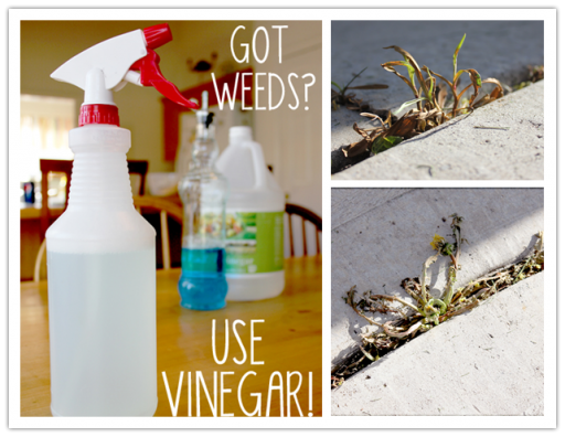 How to make cheap DIY weed killer step by step tutorial instructions