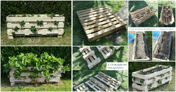 How to make strawberry planters with recycled pallets step by step DIY tutorial instructions 1
