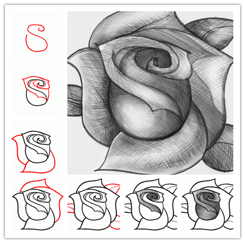 How to sketch a rose step by step DIY tutorial instructions