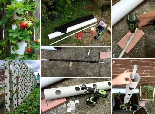 How to make DIY vertical pipe strawberry planter step by step tutorial instructions