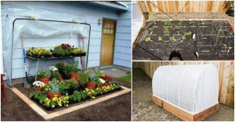 DIY fold-down convertible greenhouse
