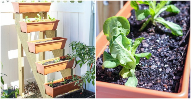 How To Build A Vertical Herb Garden Planter