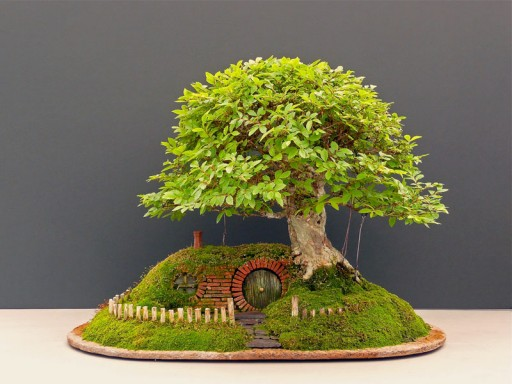 How to make DIY baggins bonsai hobbit home 8