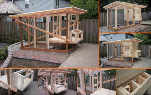 How to build a chicken coop step by step diy tutorials for How to frame a house step by step