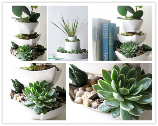How to make vertical succulent desk garden step by step DIY tutorial instructions