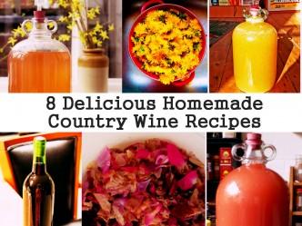 8 Delicious Homemade Wine Recipes