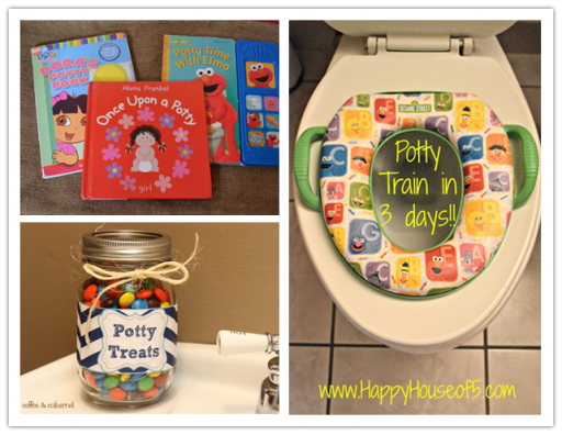 Guide For Potty Training In Three Days