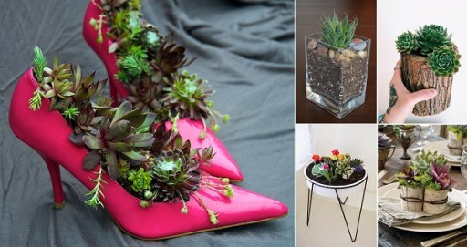 These Awesome DIY Planters Are Going To Blow Your Shoes Off