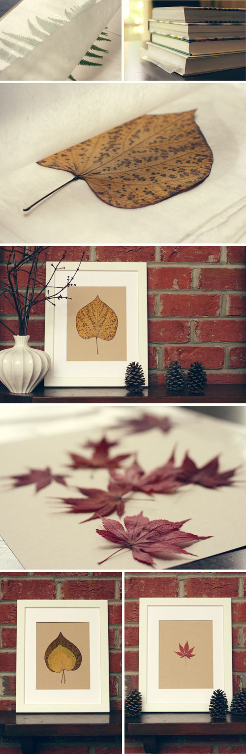 How To Make Pressed Leaf Home Decorations