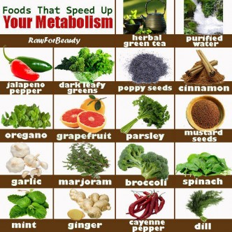 Foods That Speed Up Your Metabolism To Lose Weight