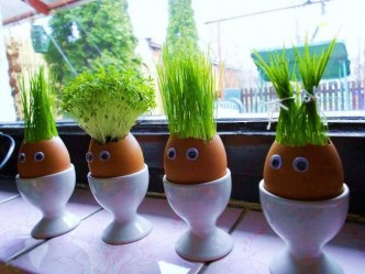 How To Make Eggshell Planters 1
