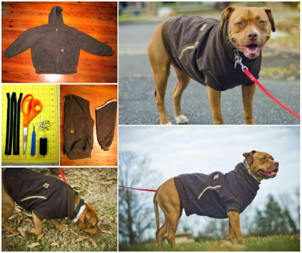 How To Recyle An Old Jacket Into A Dog Vest