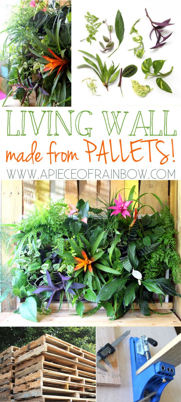 Pallet Living Wall Tutorial 2