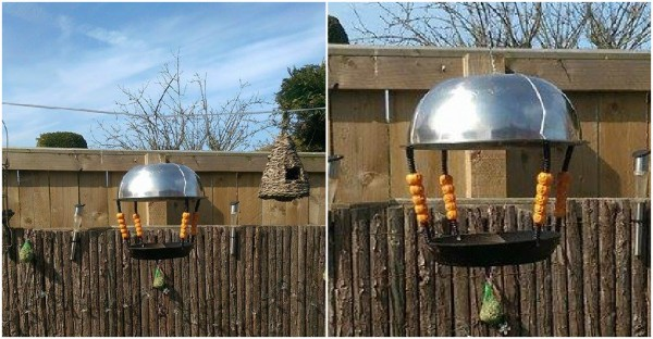 DIY Bird Feeder Made From Recycled Materials
