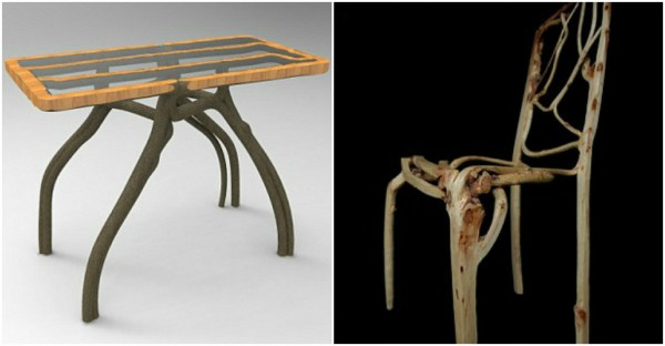 Full Grown Grow TREES Into Stunning Furniture 2
