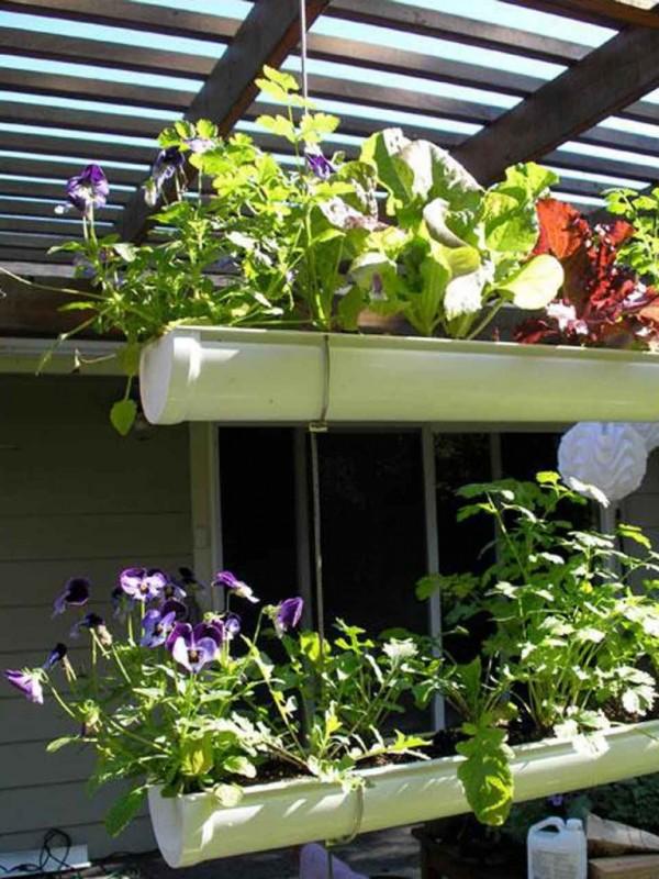 How To Make Hanging Gutter Vertical Garden 14