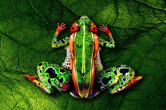 johannes-stotter-body-paint-art