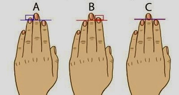 Your Finger Length Reveals Your Personality