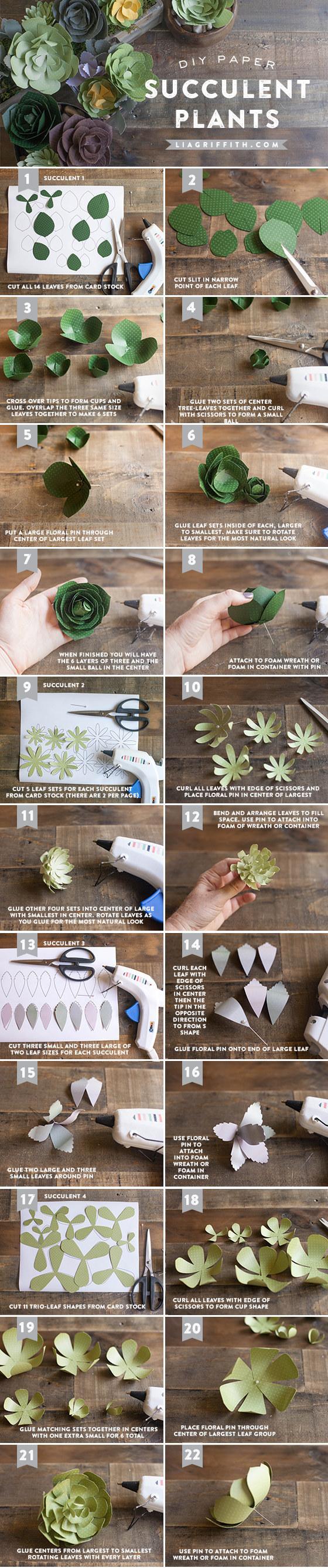 Paper Succulent Tutorial 1