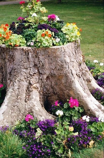 Tree Stump Planter Ideas 2