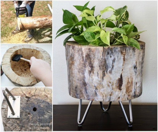 Tree Stump Planter Ideas 4