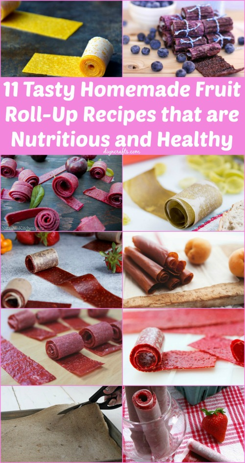 11 Homemade Fruit Roll Up Recipes 1