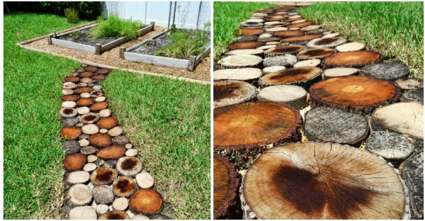 How to Create a Natural Log Pathway 2