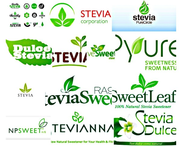 Stevia Helps Quit Smoking And Lose Weight 1