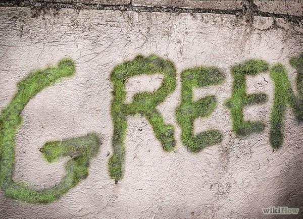 httpwww.sliptalk.commoss-graffiti 9