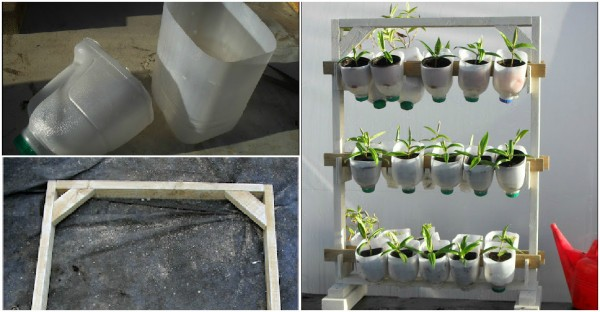 DIY Plastic Bottle Planter