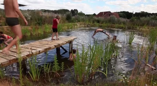 How To Build A Natural Swimming Pool 1