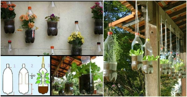 How To Make Plastic Bottle Planters