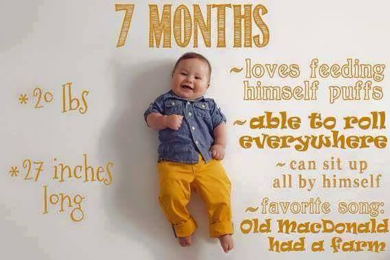 Baby Growth Chart 7