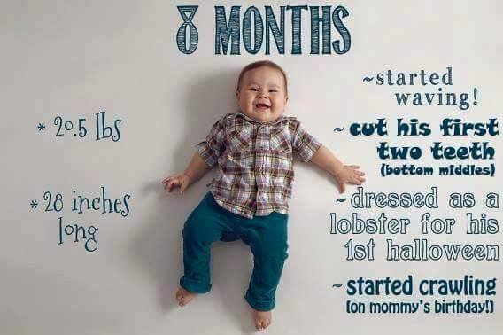 Baby Growth Chart 8